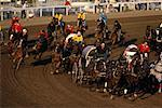 Chuckwagon Race, Calgary Stampede Alberta, Canada    Stock Photo - Premium Rights-Managed, Artist: Alec Pytlowany, Code: 700-00000367
