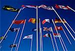 National and UN Flags    Stock Photo - Premium Rights-Managed, Artist: Ken Davies, Code: 700-00005211