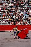 Bullfight Mexico City, Mexico    Stock Photo - Premium Rights-Managed, Artist: Masterfile, Code: 700-00005969