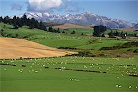Mountain Scene near Nightcaps South Island, New Zealand    Stock Photo - Premium Rights-Managednull, Code: 700-00009264