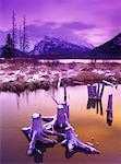 Dawn Mt. Rundle and Vermilion Lakes Banff National Park Alberta, Canada    Stock Photo - Premium Rights-Managed, Artist: Daryl Benson, Code: 700-00017722