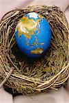 Egg Globe in Nest Asia and Australia    Stock Photo - Premium Rights-Managed, Artist: James Wardell, Code: 700-00020442
