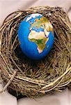 Egg Globe in Nest Europe and Africa    Stock Photo - Premium Rights-Managed, Artist: James Wardell, Code: 700-00020443