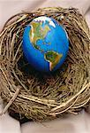 Egg Globe in Nest North and South America    Stock Photo - Premium Rights-Managed, Artist: James Wardell, Code: 700-00020444