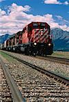 Train Morley, Alberta, Canada