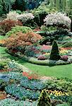 Butchart Gardens, Victoria British Columbia, Canada    Stock Photo - Premium Rights-Managed, Artist: J. A. Kraulis, Code: 700-00034502