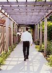 Back View of Waiter Carrying Tray Through Garden Walkway    Stock Photo - Premium Rights-Managed, Artist: Michael Mahovlich, Code: 700-00047131
