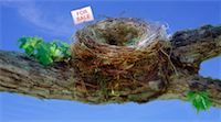 Empty Nest on Branch with For Sale Sign    Stock Photo - Premium Rights-Managednull, Code: 700-00049855