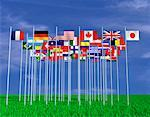International Flags    Stock Photo - Premium Rights-Managed, Artist: Guy Grenier, Code: 700-00050893