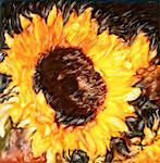 Close-Up of Abstract Sunflower    Stock Photo - Premium Rights-Managed, Artist: Chris McElcheran, Code: 700-00059606