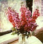 Snapdragons in Vase near Window    Stock Photo - Premium Rights-Managed, Artist: Chris McElcheran, Code: 700-00060267