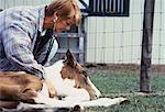 Female Veterinarian Tending to Colt Outdoors    Stock Photo - Premium Rights-Managed, Artist: Kevin Dodge, Code: 700-00061400