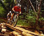 Men Riding Mountain Bikes over Wooden Path in Forest    Stock Photo - Premium Rights-Managed, Artist: Dan Lim, Code: 700-00063170