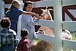 Mother and Children Feeding Goats through Fence    Stock Photo - Premium Rights-Managed, Artist: Kevin Dodge, Code: 700-00068022