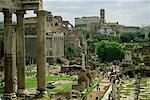 The Forum Rome, Italy    Stock Photo - Premium Rights-Managed, Artist: Gail Mooney, Code: 700-00071115