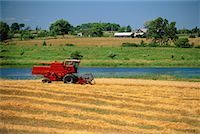Combine in Field 1,000 Islands, New York, USA    Stock Photo - Premium Rights-Managednull, Code: 700-00071510