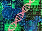DNA Strand, Gears and Circuit Board    Stock Photo - Premium Rights-Managed, Artist: Rick Fischer, Code: 700-00077351