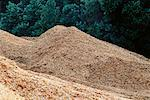 Wood Chips for Pulp and Paper Manufacturing    Stock Photo - Premium Rights-Managed, Artist: David Mendelsohn, Code: 700-00081166