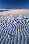 Footprints on Sand Dune White Sands National Monument New Mexico, USA    Stock Photo - Premium Rights-Managed, Artist: J. David Andrews, Code: 700-00082818