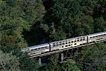 Passenger Train Crossing Black Creek Near Jacksonville, Florida, USA