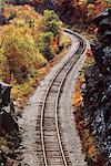 Train Tracks through Trees in Autumn    Stock Photo - Premium Rights-Managed, Artist: Roy Ooms, Code: 700-00084765