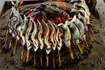 Fish on Sticks by Fire Near Jomo-Kogen, Honshu Island Japan    Stock Photo - Premium Rights-Managed, Artist: R. Ian Lloyd, Code: 700-00086966