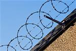 Barbed Wire Fence    Stock Photo - Premium Rights-Managed, Artist: Gloria H. Chomica, Code: 700-00150999