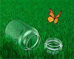 Butterfly Escaping From Jar    Stock Photo - Premium Rights-Managed, Artist: Guy Grenier, Code: 700-00151593