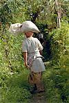 Woman Carrying Rice Ubud, Bali, Indonesia    Stock Photo - Premium Rights-Managed, Artist: Carl Valiquet, Code: 700-00153608