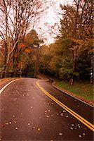 Road and Trees    Stock Photo - Premium Rights-Managednull, Code: 700-00154315