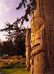 Totem Poles    Stock Photo - Premium Rights-Managed, Artist: Daryl Benson, Code: 700-00155563