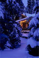 Cabin in the Woods    Stock Photo - Premium Rights-Managednull, Code: 700-00159265