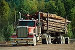Logging Truck    Stock Photo - Premium Rights-Managed, Artist: Roy Ooms, Code: 700-00159587