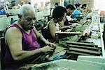Cigar Factory, Havana, Cuba    Stock Photo - Premium Rights-Managed, Artist: Bruce Fleming, Code: 700-00161091