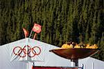 Olympic Flame at Nakiska Stock Photo - Premium Rights-Managed, Artist: Alec Pytlowany, Code: 700-00164040