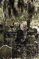 Old Cemetery Charleston, South Carolina    Stock Photo - Premium Rights-Managednull, Code: 700-00168812