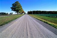 peter griffith - Rural Road, Woodville, Ontario, Canada    Stock Photo - Premium Royalty-Freenull, Code: 600-00170948