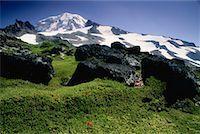 Mount Rainier From Spray Park, Mount Rainier National Park, Washington, USA    Stock Photo - Premium Royalty-Freenull, Code: 600-00175509