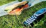Cell Phone and Sandwich    Stock Photo - Premium Rights-Managed, Artist: Jeremy Maude, Code: 700-00177995