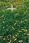 Grave at Native Cemetery Moose Factory, Ontario, Canada    Stock Photo - Premium Rights-Managed, Artist: Freeman Patterson, Code: 700-00181888