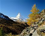 Matterhorn Zermatt, Switzerland    Stock Photo - Premium Rights-Managed, Artist: Larry Fisher, Code: 700-00182193