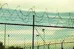 Barbed Wire Fence    Stock Photo - Premium Rights-Managed, Artist: Tom Collicott, Code: 700-00182528