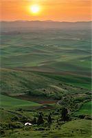 Landscape Palouse, Washington, USA    Stock Photo - Premium Rights-Managednull, Code: 700-00183315