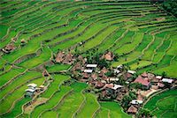 philippine terrace farming - Small Terrace-Farming Town Philippines    Stock Photo - Premium Rights-Managednull, Code: 700-00183720