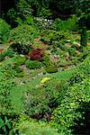 Butchart Gardens Victoria, British Columbia Canada    Stock Photo - Premium Rights-Managed, Artist: J. A. Kraulis, Code: 700-00184192