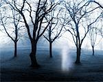 Apparition in Forest    Stock Photo - Premium Rights-Managed, Artist: Nora Good, Code: 700-00190958