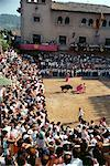 Bull Fight Spain    Stock Photo - Premium Rights-Managed, Artist: Gail Mooney, Code: 700-00196013