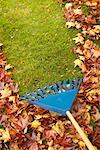 Raking Leaves    Stock Photo - Premium Rights-Managed, Artist: Bill Frymire, Code: 700-00197313