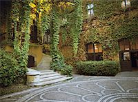 Vines and Mosaic in Courtyard Budapest, Hungary    Stock Photo - Premium Rights-Managednull, Code: 700-00198693