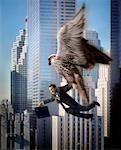 Falcon Carrying Businessman    Stock Photo - Premium Rights-Managed, Artist: Philip Rostron, Code: 700-00199338